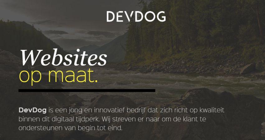 DevDog - Designer and Programmer