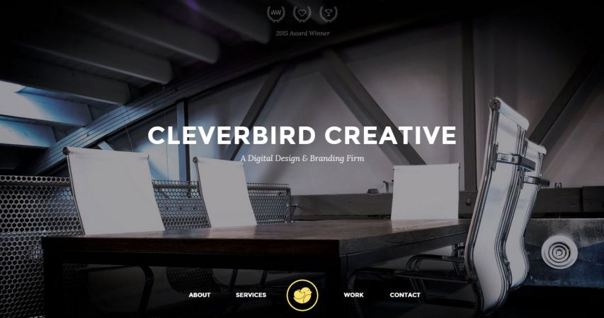 Clever Birds