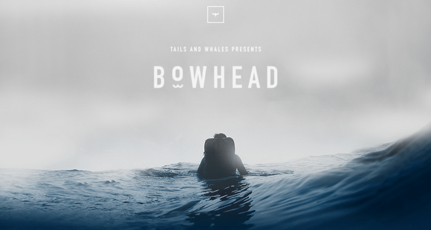 Bowhead by Tails And Whales