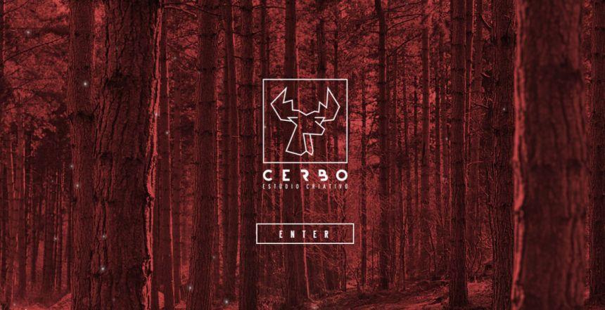 Cerboe Studio