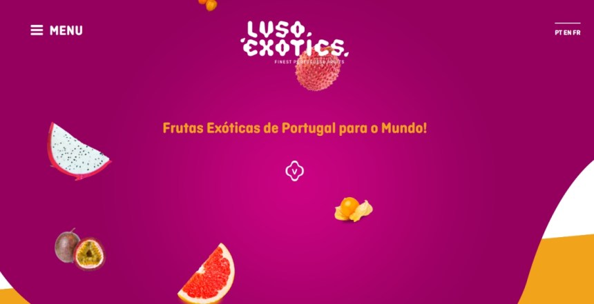 Lusoexotics