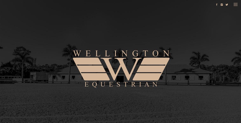 wellingtonequestrianagency