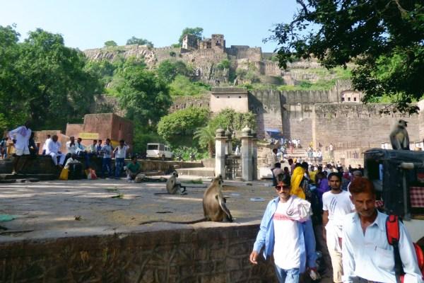 Sacred Sites in Indian Tiger Reserves