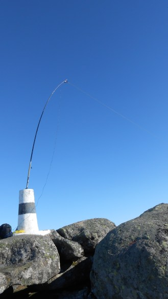 The trig: Right place for the fishing rod...