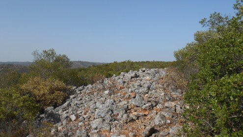Defensive wall in the plateau