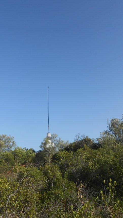 The trig supporting the fishing pole