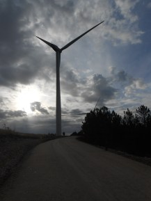 Arriving to the wind generators dirt road.