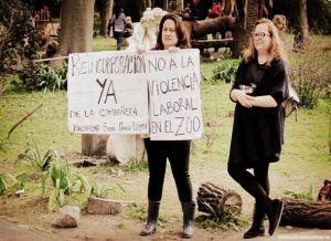 zoo carteles