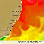 Latest ocean temperature chart