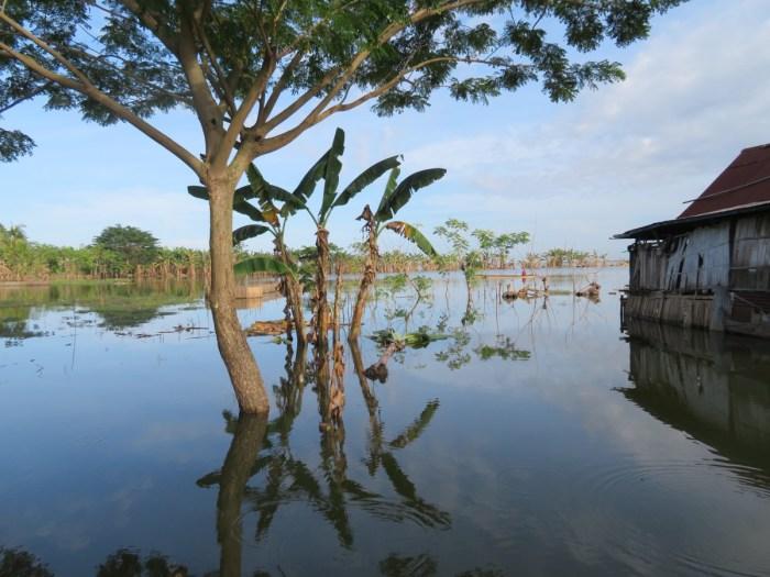 hoogtepunten Sulawesi: tempemeer