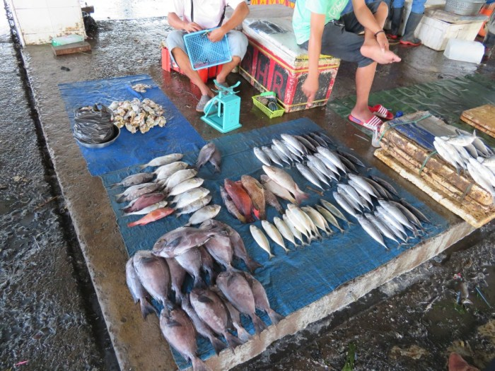 hoogtepunt Sulawesi: vismarkt Makkasar