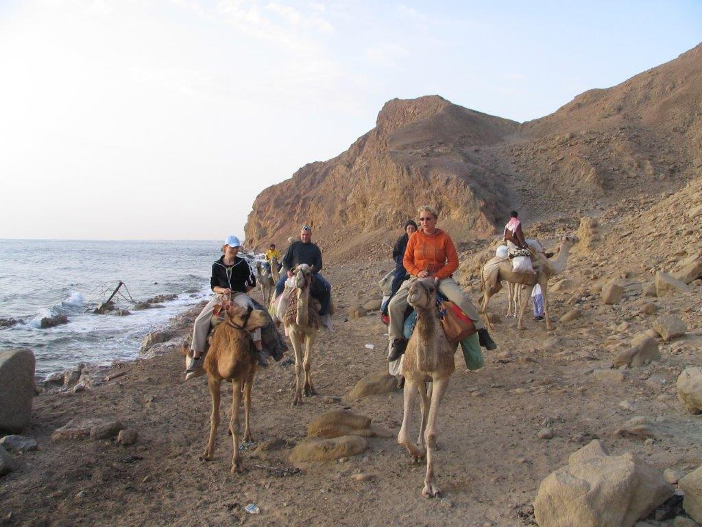 kamelensafari Sinaï