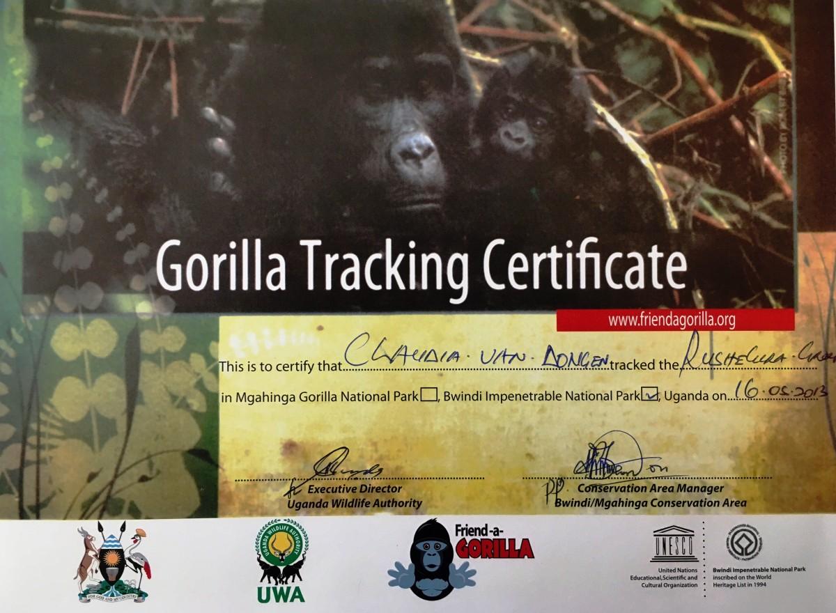 gorilla tracking certificate