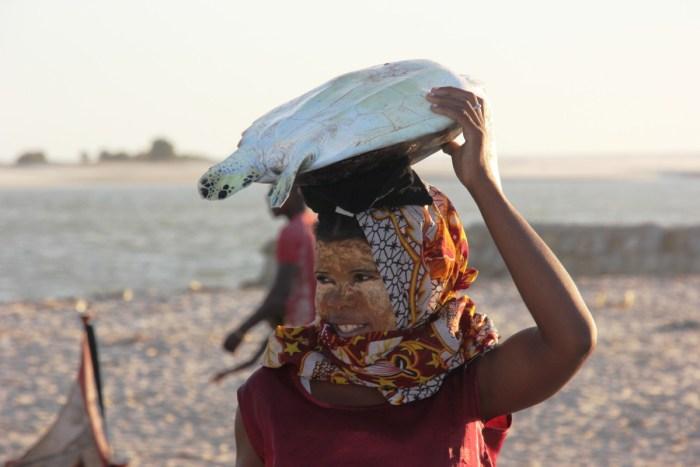 vrouw draagt schildpad op hoofd