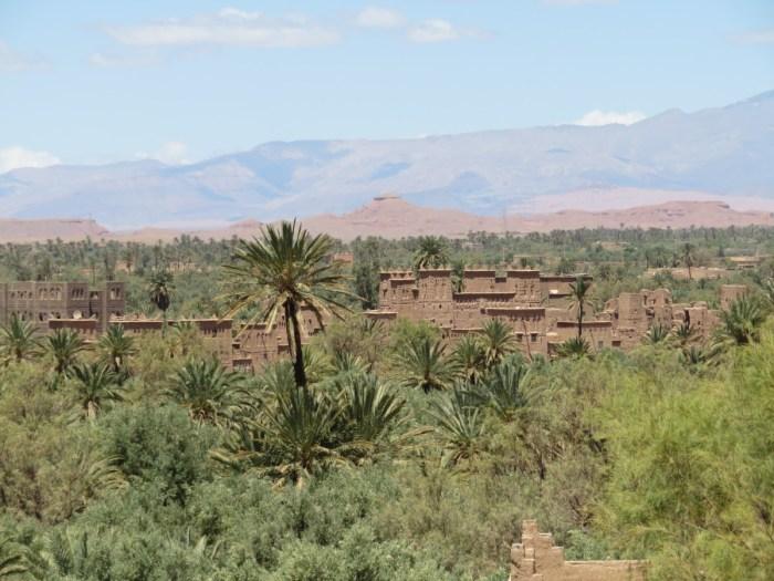 Marokko: palmentuin van Skoura