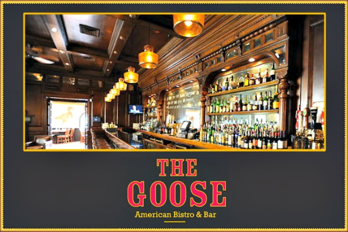 The Goose Logo sized