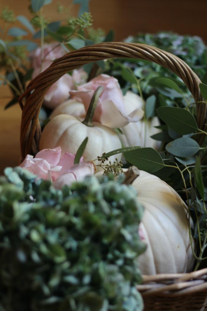 Harvest in a basket