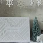 Birchbox Subscription Review: December