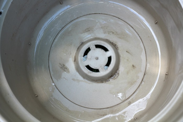 Plastic Pot with drainage holes