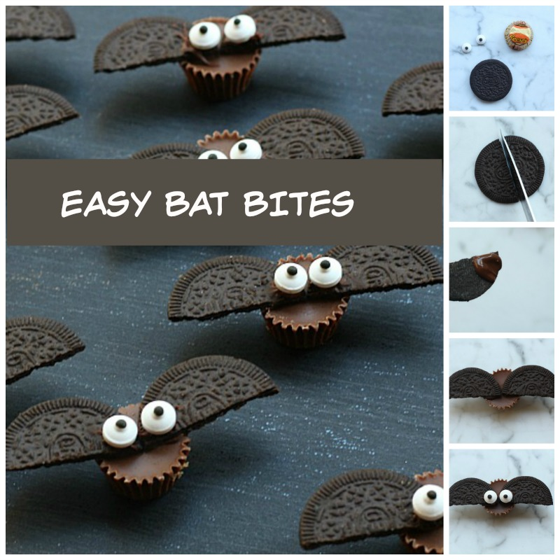 easy-bat-bites