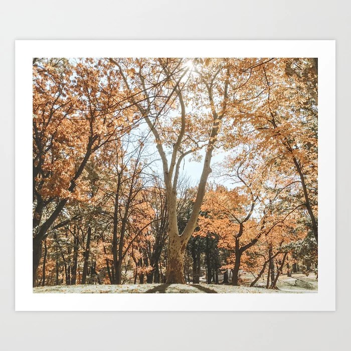 """Autumn Scenes"" Art Print 