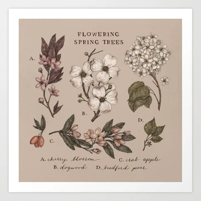 Sunday's Society6 | Outdoor flowering spring tree flowers art print