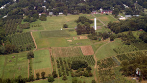 Photo courtesy of the Conn. Agricultural Experiment Station web site