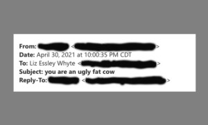 A screenshot of the header of an email sent to reporter Liz Essley Whyte. (Center for Public Integrity)