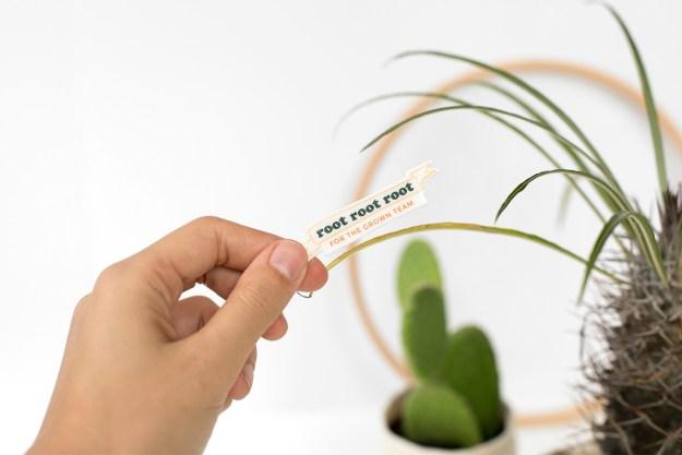 Printable Plant Pins DIY Crazy Plant Lady Costume