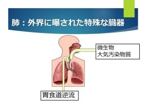 肺ー外界に暴露された臓器