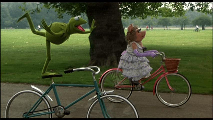 Bike-Riding-779333