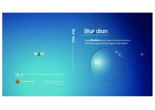 [1]BLUEDIAN