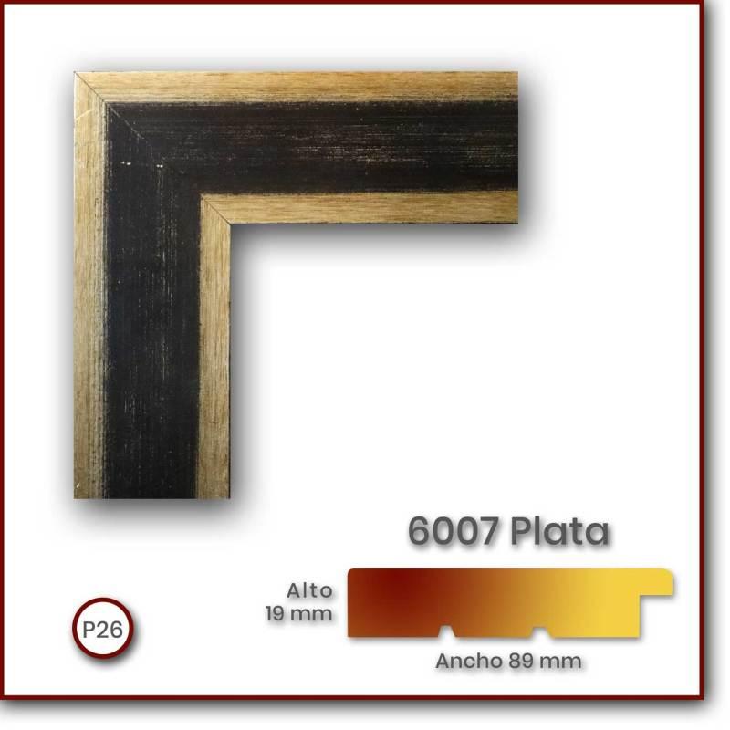 6007_Plata_89x19_P26