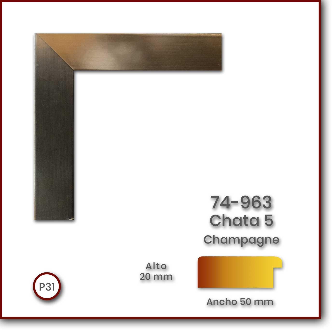 74-963_Chata-5020_Champagne_50x20_P31