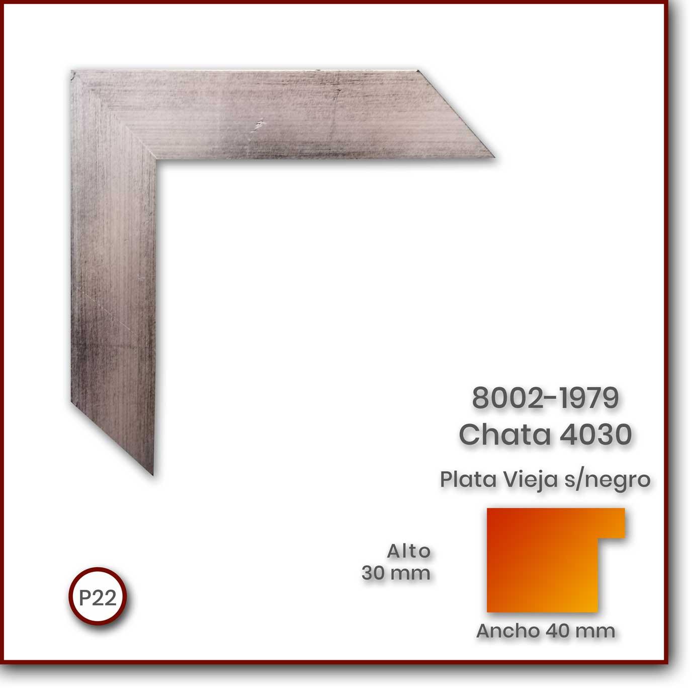 8002-1979-Chata-4030-Plata-Viejasnegro-40x30-P22