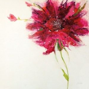 W29797 - Jan Griggs - Pink Daisy on White