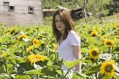Jess entre girasoles en The messengers