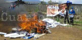 Indigenas de Nahuatzen queman propaganda de panista Alma Mireya Gonzalez 6