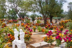 "Production designer Harley Jessup traveled to cemeteries in Oaxaca (and beyond), to soak up the Día de Muertos décor, including orange cempasúchil (marigold) and fuchsia celosia (cockscomb) flowers, which influenced the color palette of the film. Over the course of three years, the filmmakers visited museums, markets, plazas, workshops, churches, haciendas and cemeteries throughout Mexico. They were welcomed into the homes of several families to learn about their livelihoods, music and traditions. Extensive research and collaboration were key to bringing this story of music and family to the screen. Disney•Pixar's ""Coco"" opens in U.S. theaters on Nov. 22, 2017."