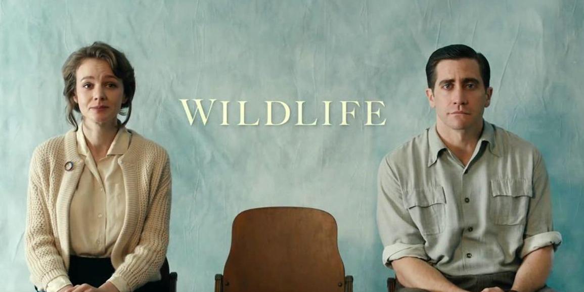wildlife-975517534-large