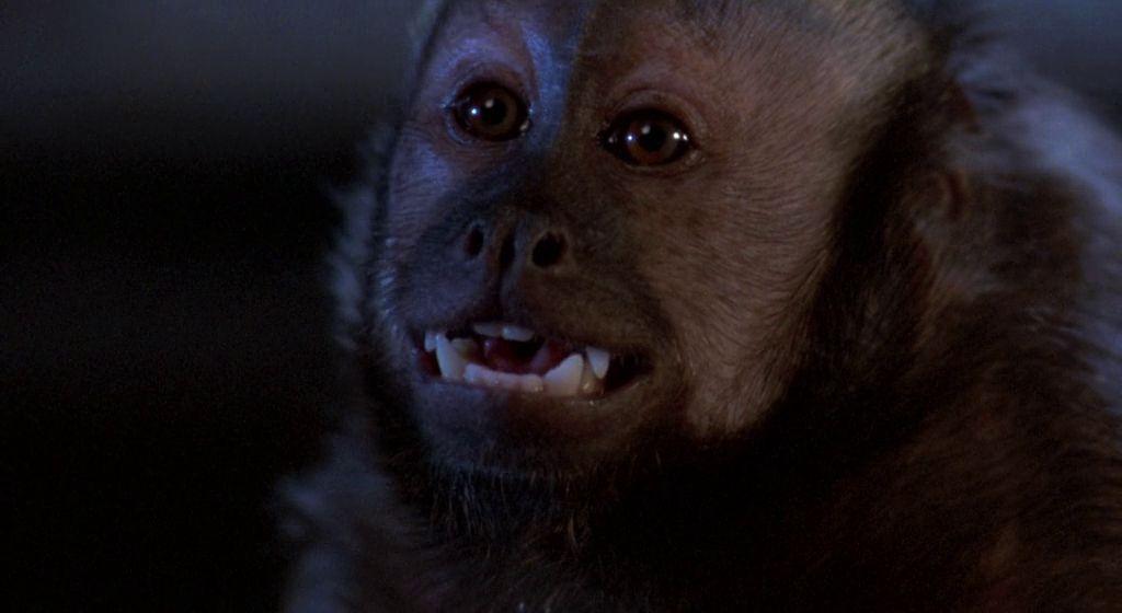 Monkey Shines Monerias Diabolicas 3