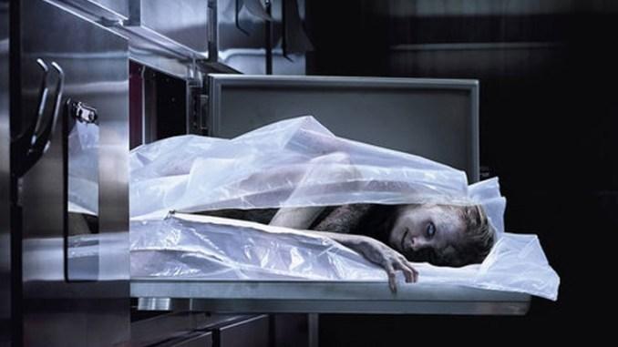 Cadáver película