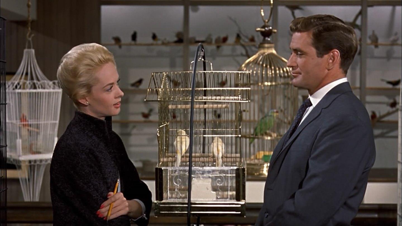 gli-uccelli-1963-the-birds-alfred-hitchcock-recensione-03