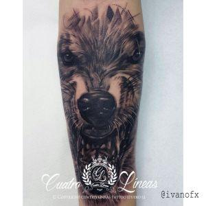 tatuaje lobo realista en madrid cuatro lineas tattoo estudio madrid carabanchel