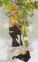 dreaming way tarot the hanged man