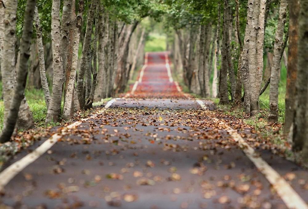 El camino del Perdón