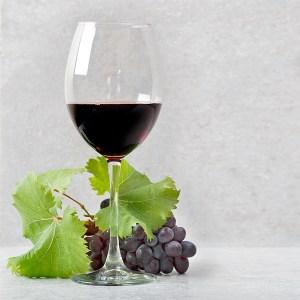 vino tinto ecológico certificado