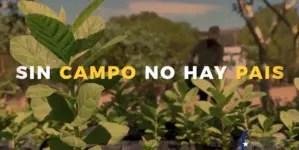 Lanzan campaña para evitar catástrofe alimentaria en Cuba
