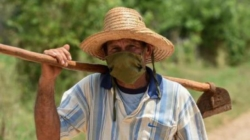 Sin campo no hay país: una propuesta contra la hambruna en Cuba