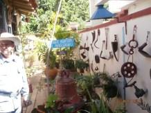 La maqueta del Bosque del Ariguanabo en la casa de Felo